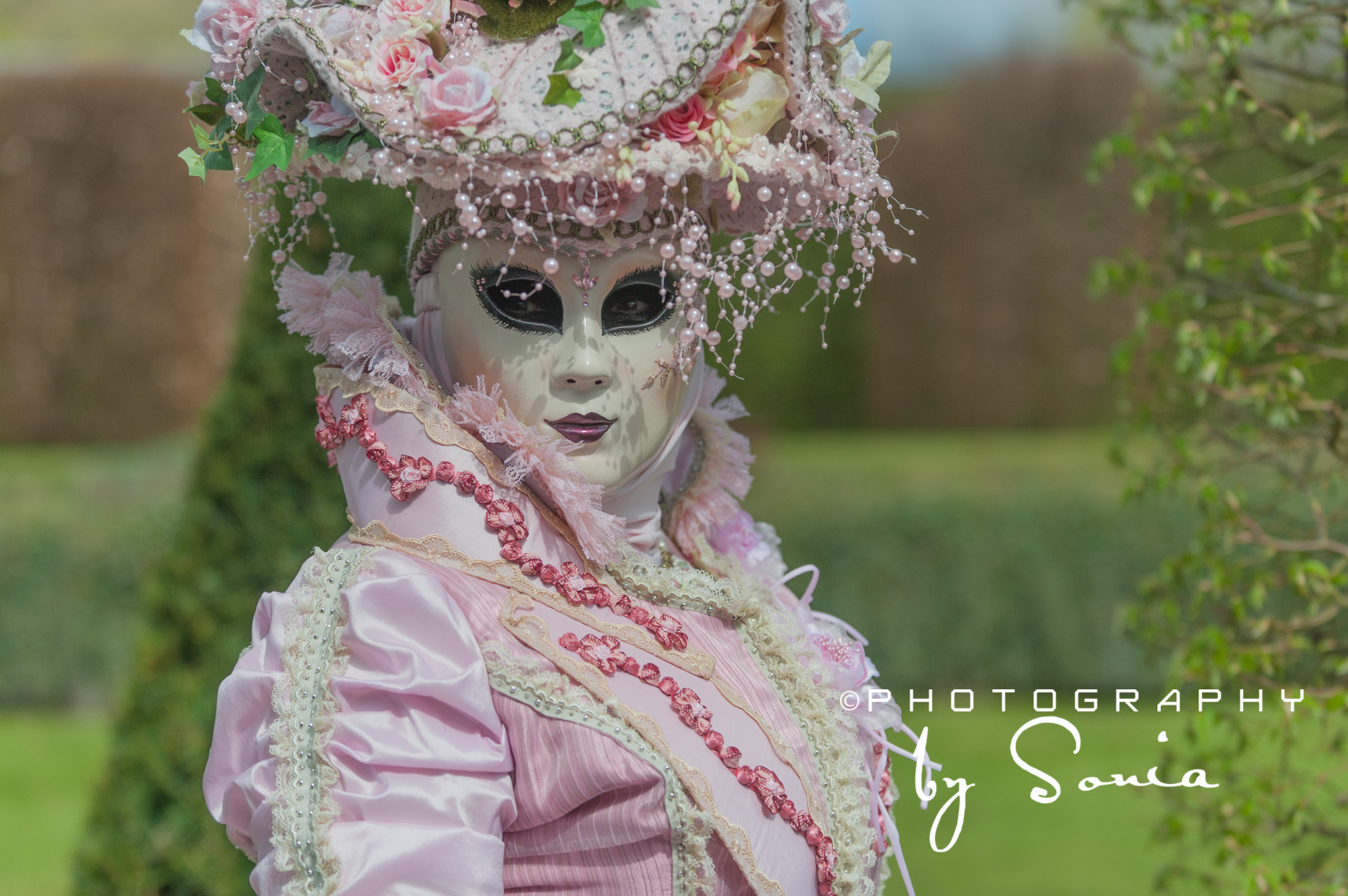 Jardins d annevoie photography webdesign by sonia for Jardin annevoie venise 2015
