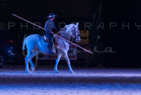 salon-du-cheval--hannut-1602_25647780944_o