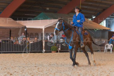 salon-du-cheval--hannut-1001_25647892014_o