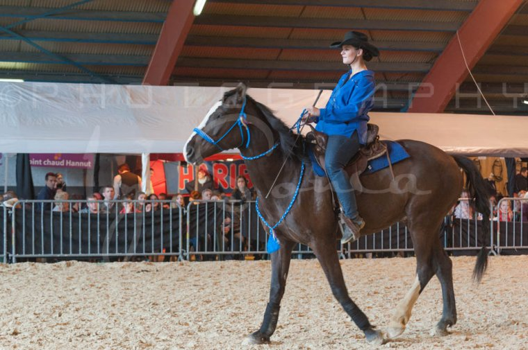 salon-du-cheval--hannut-1004_25647790044_o