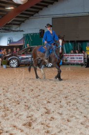 salon-du-cheval--hannut-1012_25979815090_o