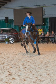 salon-du-cheval--hannut-1013_25649990213_o