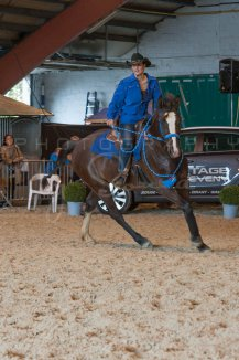 salon-du-cheval--hannut-1016_26160231102_o