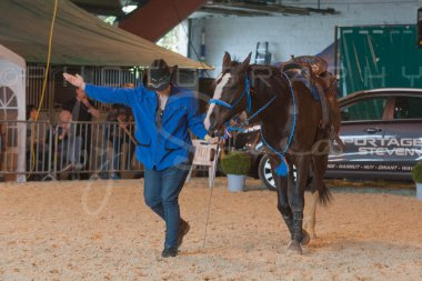 salon-du-cheval--hannut-1042_25647885164_o