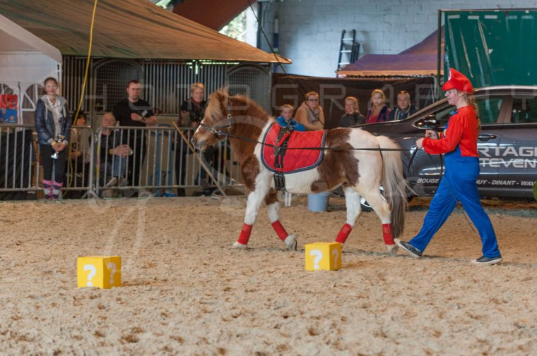 salon-du-cheval--hannut-1043_26186389391_o