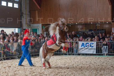 salon-du-cheval--hannut-1048_25649983943_o