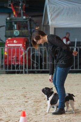 salon-du-cheval--hannut-108_25650076713_o