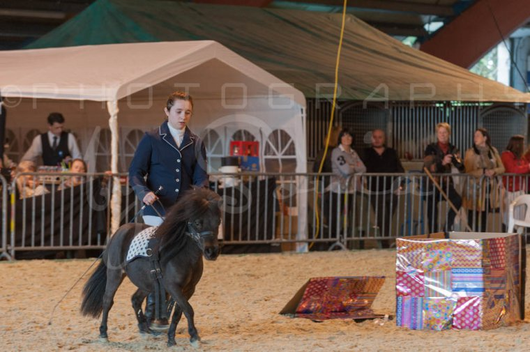 salon-du-cheval--hannut-1090_26252651725_o