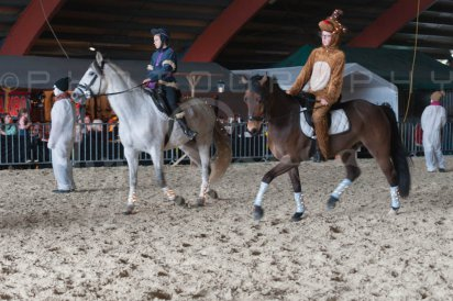 salon-du-cheval--hannut-1101_25649973523_o