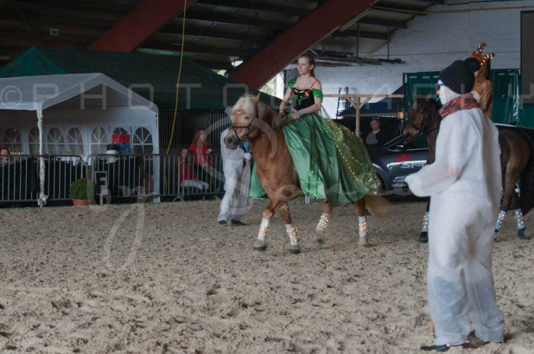 salon-du-cheval--hannut-1114_26252648645_o