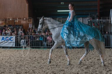 salon-du-cheval--hannut-1117_26226724036_o