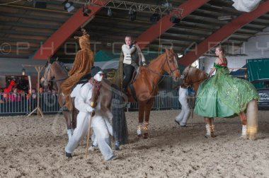 salon-du-cheval--hannut-1121_25979795910_o