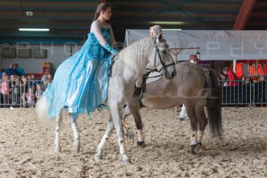 salon-du-cheval--hannut-1122_26186375051_o