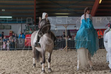 salon-du-cheval--hannut-1123_25979795400_o