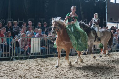 salon-du-cheval--hannut-1127_26252646775_o