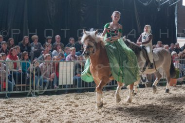salon-du-cheval--hannut-1128_25647870764_o