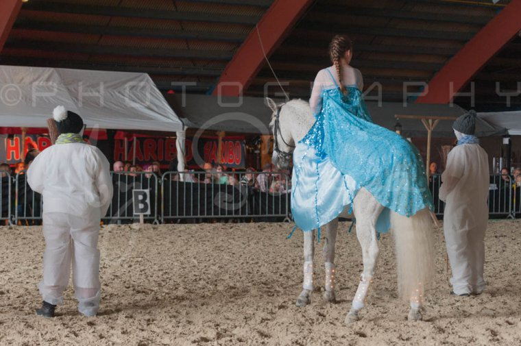 salon-du-cheval--hannut-1129_26252646475_o