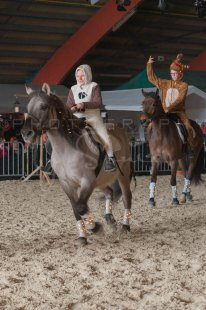 salon-du-cheval--hannut-1135_25647870244_o