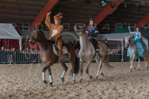 salon-du-cheval--hannut-1137_25979794160_o