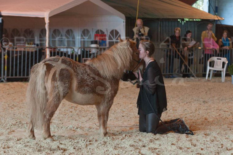 salon-du-cheval--hannut-1164_25647864724_o