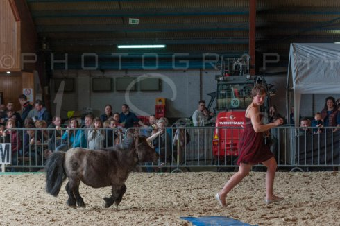 salon-du-cheval--hannut-1214_25649886463_o