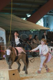 salon-du-cheval--hannut-1230_25649951193_o