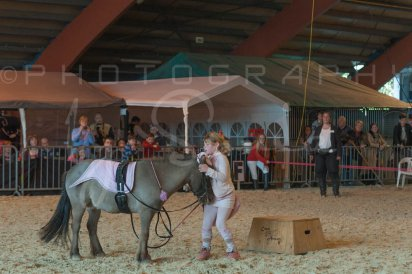 salon-du-cheval--hannut-1233_26160191442_o