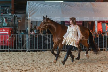 salon-du-cheval--hannut-1252_26226697366_o