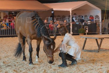 salon-du-cheval--hannut-1266_26160185342_o