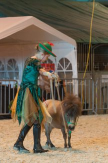 salon-du-cheval--hannut-1276_25979767870_o
