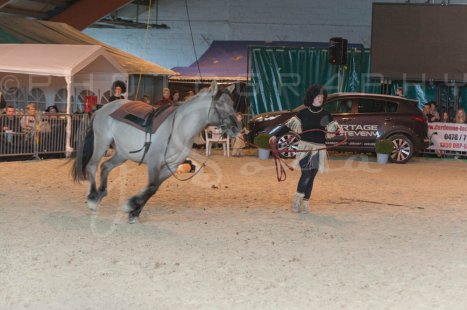 salon-du-cheval--hannut-1300_26186343301_o
