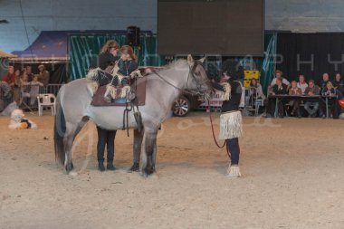 salon-du-cheval--hannut-1319_25647839104_o