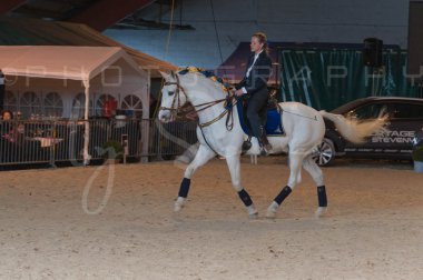 salon-du-cheval--hannut-1350_25647835454_o