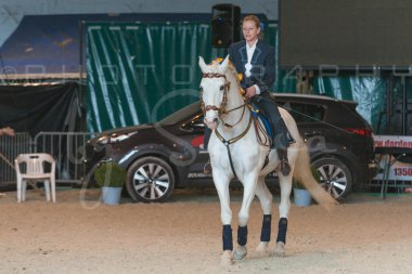 salon-du-cheval--hannut-1359_26252609815_o