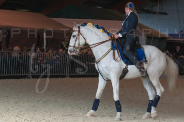 salon-du-cheval--hannut-1360_26226634296_o