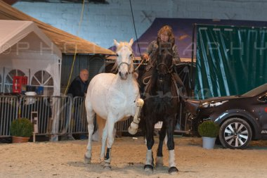 salon-du-cheval--hannut-1365_25649933093_o