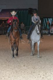 salon-du-cheval--hannut-1400_26160124162_o
