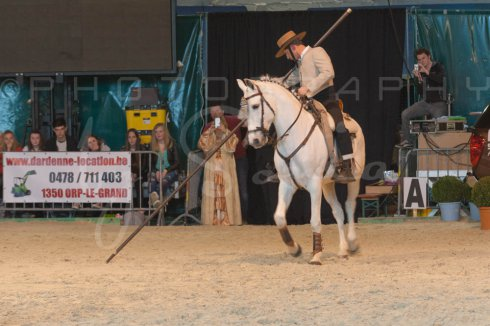 salon-du-cheval--hannut-1424_26160123642_o