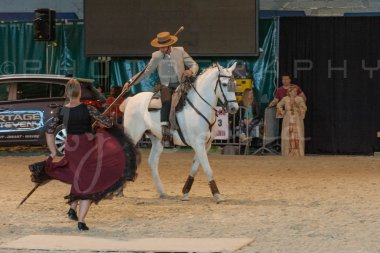 salon-du-cheval--hannut-1446_25649882613_o