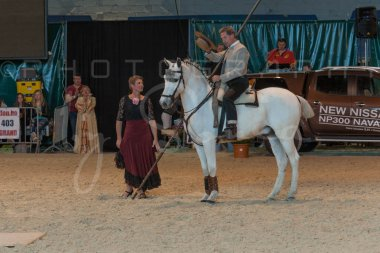salon-du-cheval--hannut-1448_26252598405_o