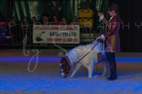 salon-du-cheval--hannut-1488_25647817854_o