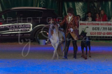salon-du-cheval--hannut-1498_26186283491_o