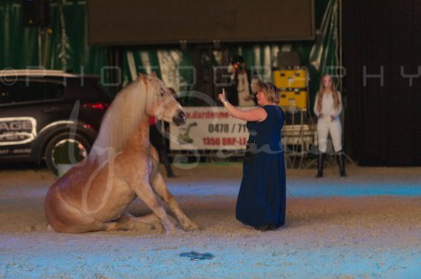 salon-du-cheval--hannut-1515_26252587605_o