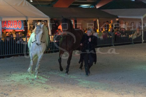 salon-du-cheval--hannut-1545_26186282731_o