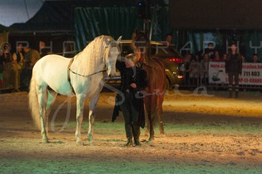 salon-du-cheval--hannut-1550_25979731800_o