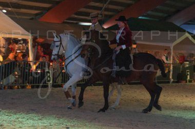 salon-du-cheval--hannut-1560_26226631856_o