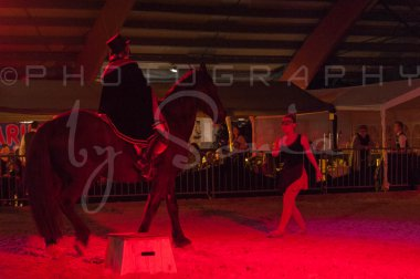 salon-du-cheval--hannut-1586_26186306091_o