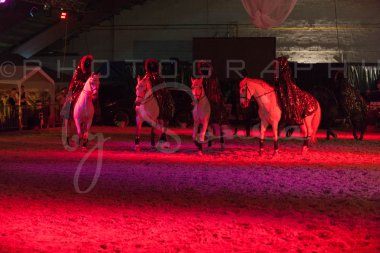 salon-du-cheval--hannut-1590_25647804774_o