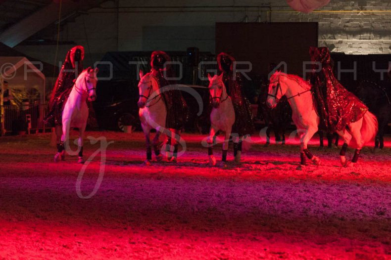 salon-du-cheval--hannut-1591_26226653956_o