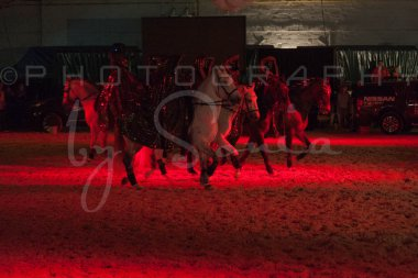 salon-du-cheval--hannut-1596_26186282091_o